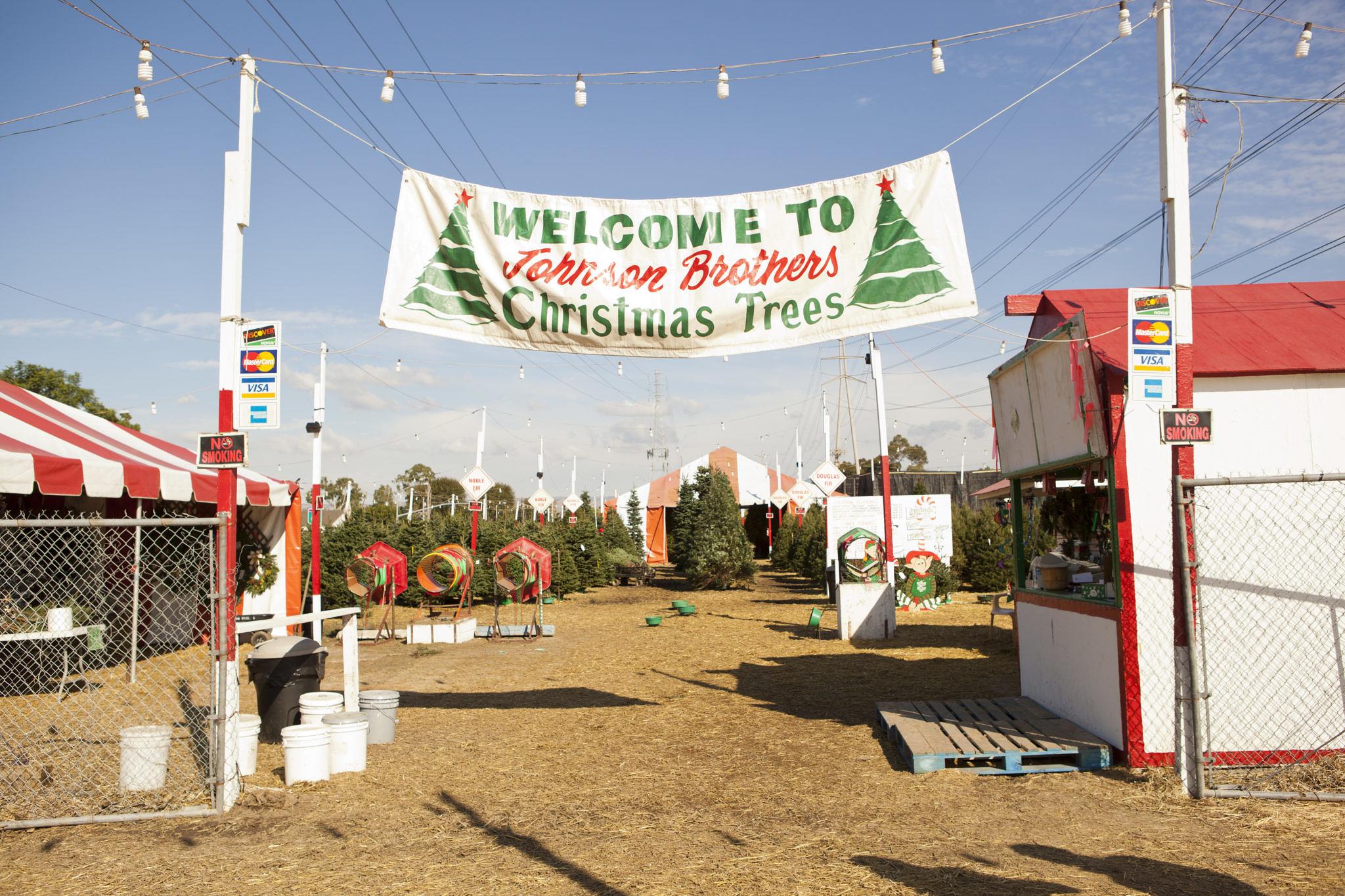 tothineownstylebetrue-johnson-brothers-christmas-trees-2