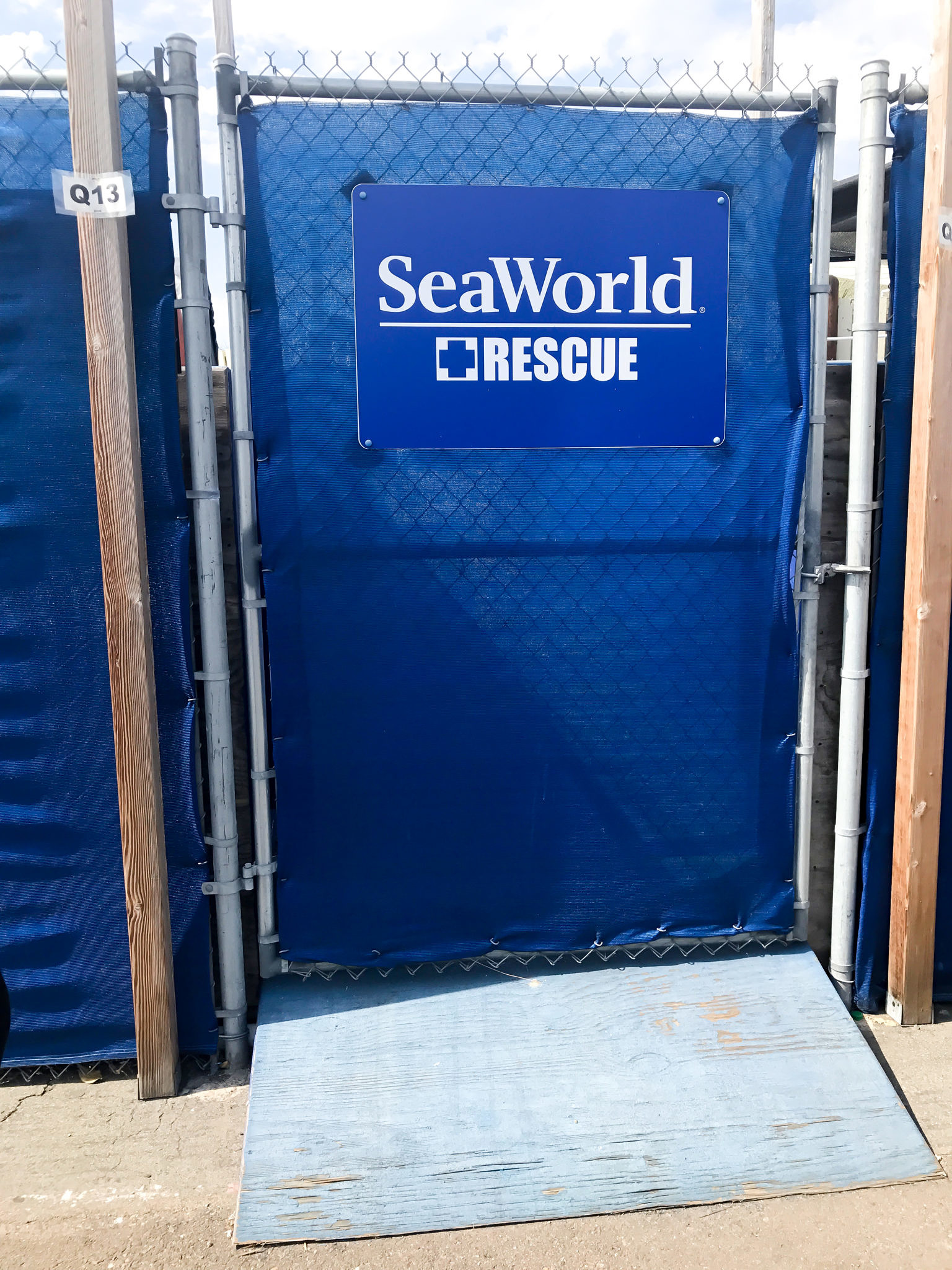 Behind The Scenes Family Day at SeaWord's San Diego with The Moms + SeaWorld Family 4-Pack Ticket Giveaway!!!